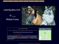 Détails : Cartoonland Maine-Coon élevage de maine-coon Paris - Pension pour chats